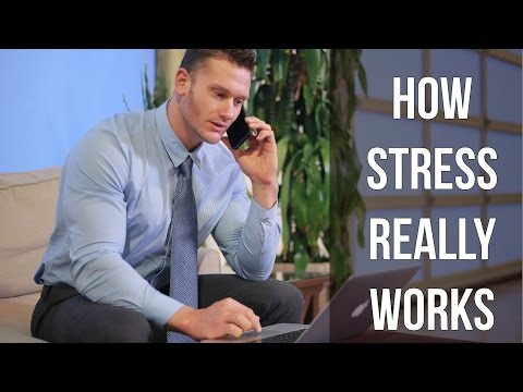 How Stress Really Works
