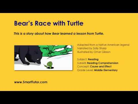 Bears Race with Turtle | Cause and Effect | Third Grade