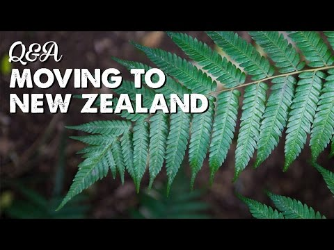 Moving to New Zealand Q&A 2 | A Thousand Words