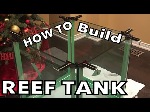 How To Build a Reef Tank ( Part 6 )