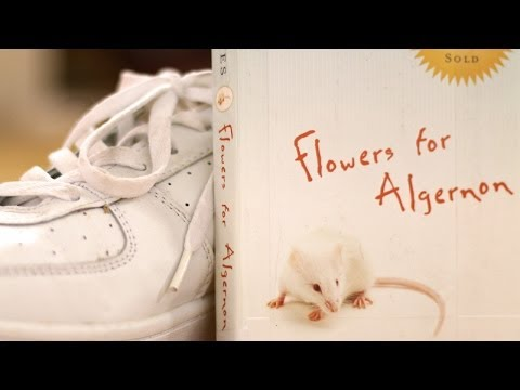 flowers for algernon by daniel keyes book summary and review