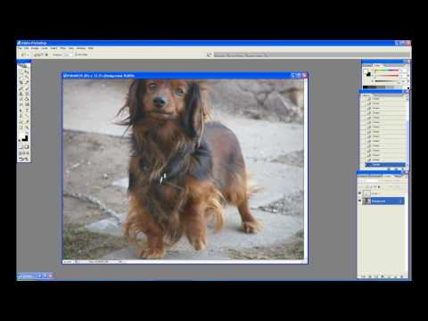 Photoshop CS2 Object removal  (Chain)