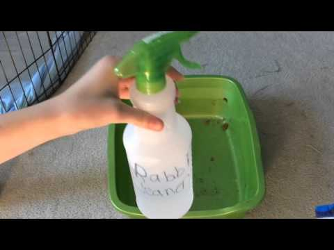 How to Clean Your Rabbits Litterbox
