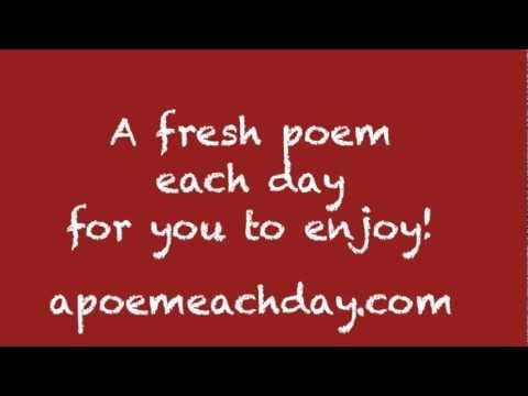 A Poem Each Day: The book dream project