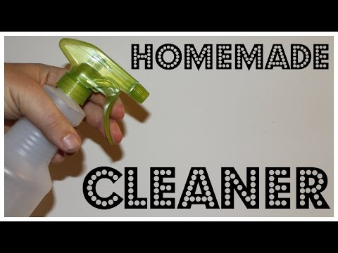 Homemade Spray Cleaner