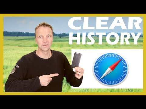 Clear Surf History on iPhone or iPad 2018
