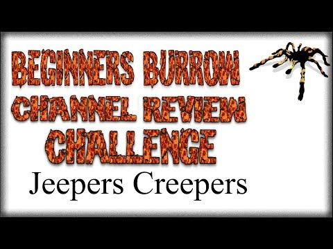 CRC Jeepers Creepers - Beginners Burrow