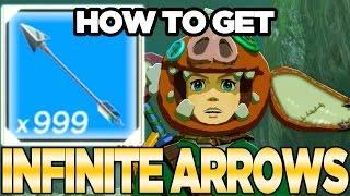 *NEW* Infinite Arrows Farming Glitch / AFK Arrow Farming in Breath of the Wild | Austin John Plays