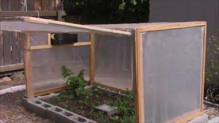 mini backyard greenhouse