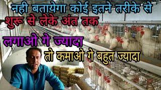 Poultry Farming Business Plan In India In Hindi Murgi Palan