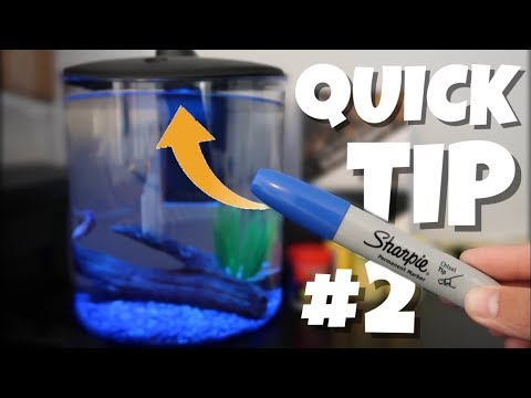 Quick Tip #2: How to Change COLOR of LED Lighting the EASY Way!!!