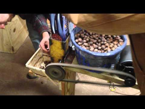 Redneck Nut Cracker in action
