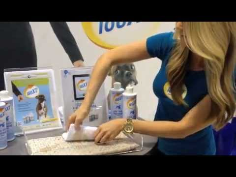 How to get rid of cat urine with 180XT Stain, Odor & Pheromone Remover