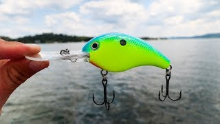 The Pro's Don't Want You To Know This Ledge Fishing Secret! + ( Monster Bass )