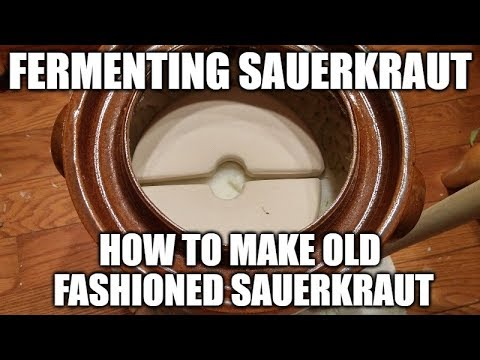 Fermenting Sauerkraut - How To Make Old Fashioned Sauerkraut