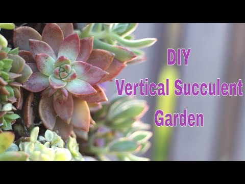 The Home Depot DIH Workshop: Vertical Succulent Garden