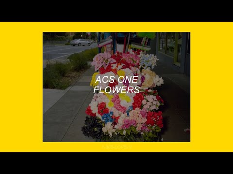 FLOWERS // ACS ONE (LYRICS)