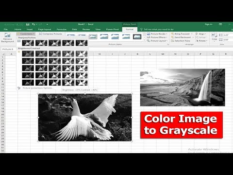 Excel Tutorial- How to Convert Color Image to Grayscale in Microsoft Excel 2017