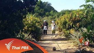 ชุมชนทั่วไทย : เกษตรกร อ.กุยบุรี นำศาสตร์พระราชา มาปรับใช้ (31 ต.ค. 60)
