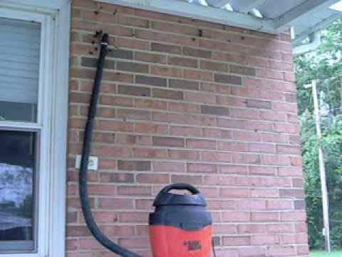 Hornet Nest Infestation Annihilation via Shop Vacuum