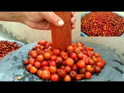 Sweet & Sour Jujube Fruits Recipe || Making Traditional Indian Berries Pickle || With English Sub