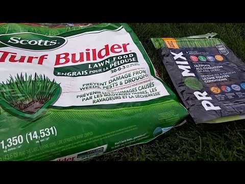 Easy. The perfect grass with no work.