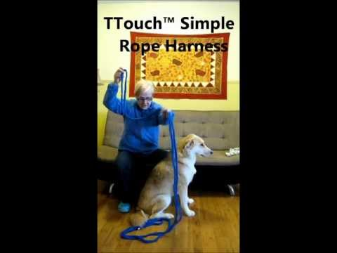 Tellington TTouch™ Simple Rope Dog Harness