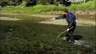 Man vs. Wild - Alaska Fishing Salmon