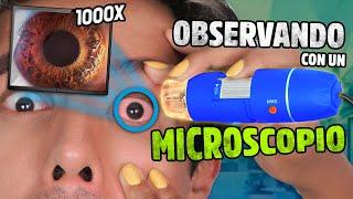 ASÍ SE VE TODO CON UN MICROSCOPIO 1000X | POLINESIOS VLOGS