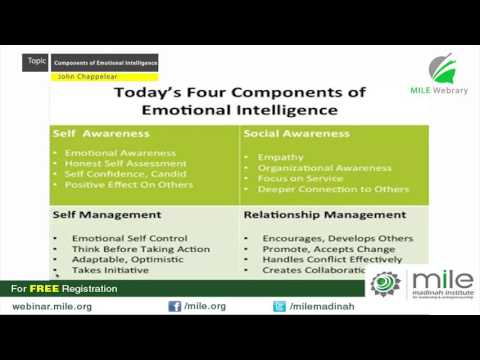 Four Components of Emotional Intelligence   John Chappelear   MILE Webrary
