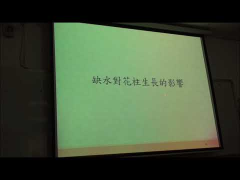 Ovary Apical Abortion under Water Deficit ...... in Maize (in Chinese)