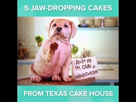 5 Jaw-Dropping Cakes | Texas Cake House Season 1 | DIVA