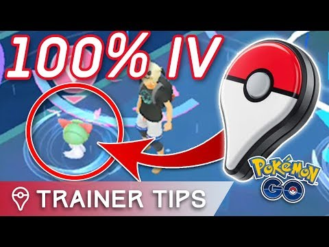 THE PERFECT IV GO PLUS CHALLENGE (100% Ralts & Slakoth)