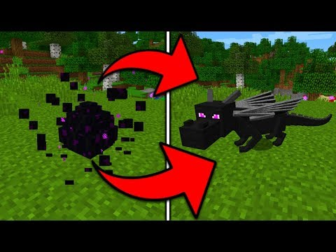 How To Hatch the Ender Dragon Egg in Minecraft Pocket Edition (Baby Dragon)