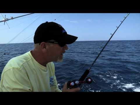 IGFA Anglers Digest: How to catch a Sailfish