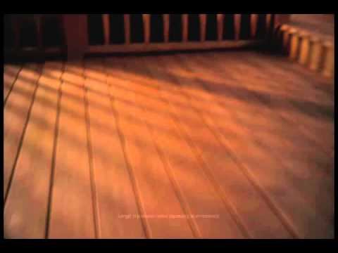 Thompson's WaterSeal: Waterproofing Deck Stain
