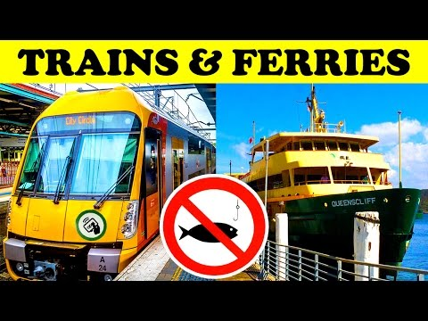 Sydney Trains & Ferries Trainspotting Ferry Spotting Foamers Tour
