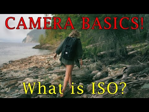 Camera Basics! What is ISO and what does it do? Photography/Video 101