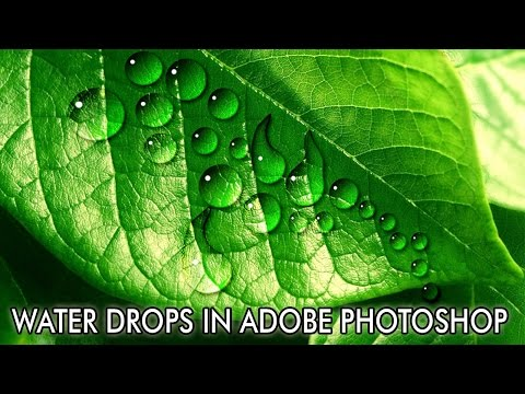 Water Drops In Adobe Photoshop