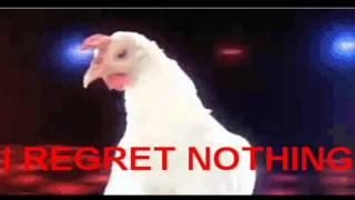 ARE YOU TIRED OF REGULAR CHICKENS?? nightblogging fluffy chicken ...