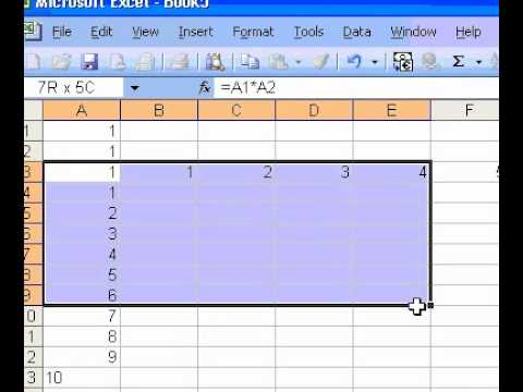 Microsoft Office Excel 2003 Create a multiplication table