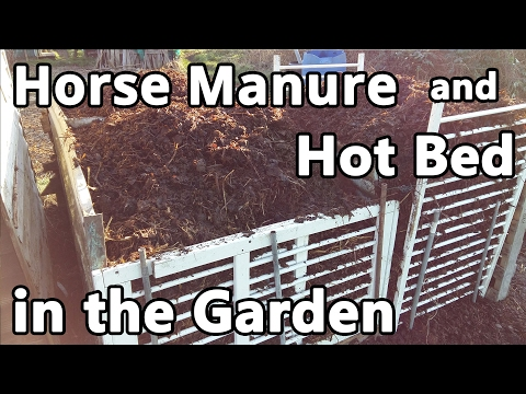 Horse Manure and Hot Bed in the Garden