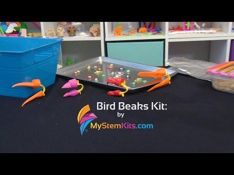 NEW! Bird Beaks Kit