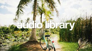 Palmtrees — Scandinavianz [Vlog No Copyright Music]