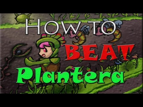 How to beat Plantera in Terraria xbox one / Ps4
