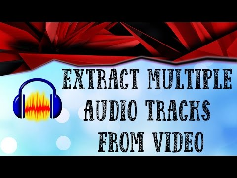 Extract multiple audio tracks from mp4 to separate audio files with Audacity