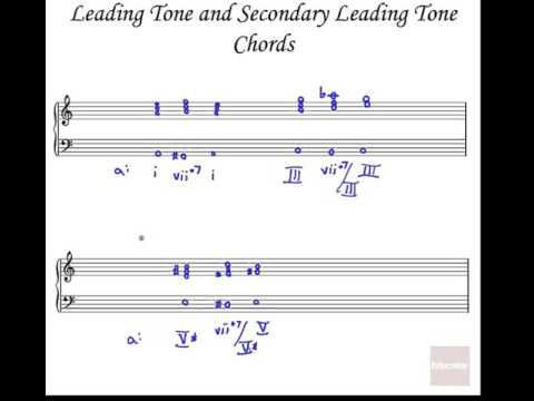 Secondary Dominants Leading Tone Chords APM 16