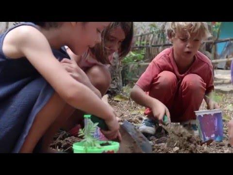 Green School Learning Neighbourhood: Primary School