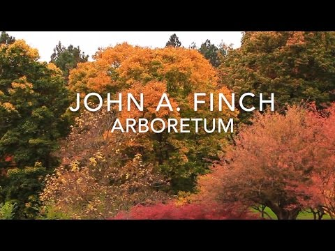 John A. Finch Arboretum - DIY Glidecam