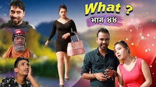 राजु मास्टरको WHAT Part 44 || 18 october || 2019 | Raju Master | Master TV